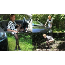 Amber's Roadside Emergency (MP4) - Amber Wells