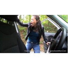 Driving Dilemma (MP4) - Linh